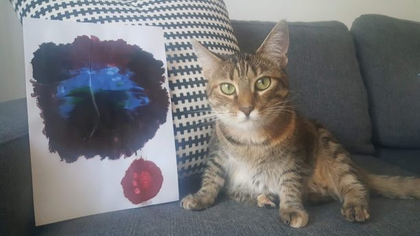 Cats can painting