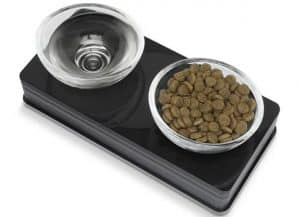 cat food bowls glass