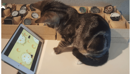 best active apps cats